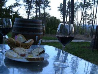 自然の中で味わうワインは、また格別!