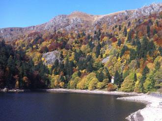 Un lac à proximité en automne