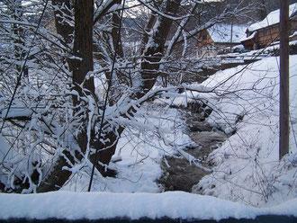 Le ruisseau qui traverse la propriété vue du pont