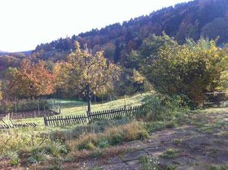 Vue sur la vallée depuis la terasse