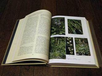 平凡社 日本の野生植物