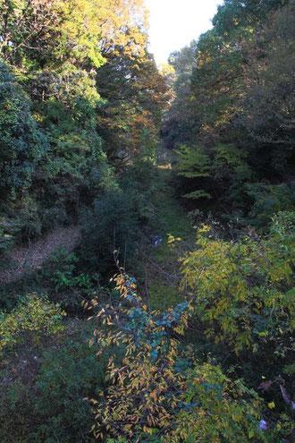 吊り橋から見下ろす。けっこう深い谷