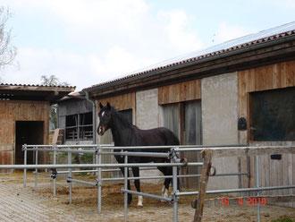 à la ferme à Überlingen