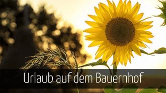 Urlaub auf dem Bauernhof Deutschland
