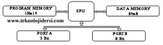 pic yapısı