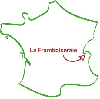 Framboiseraie ballaison Haute-Savoie