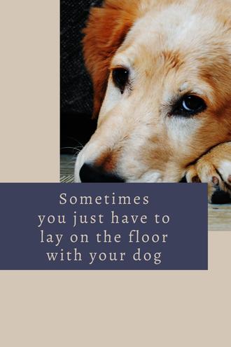 Hondenvakantie