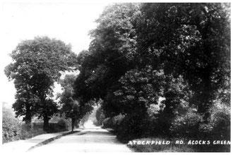 Stockfield Road 1905