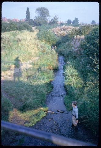 Bourn Brook at Bottetort Road photographed by Phyllis Nicklin in 1962 via Keith Berry. (Note the photographer's shadow.)