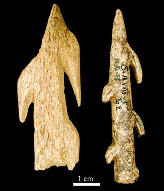 Harpons à deux rangs de barbelures, Magdalénien supérieur (Duruthy)