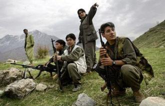 Kurdiske frihedskæmpere