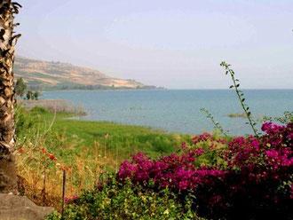 Galilæa