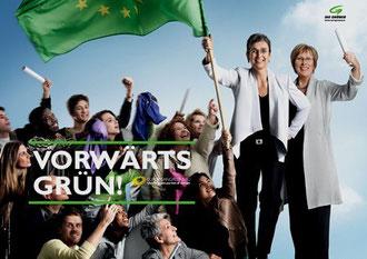 Partiet De Grønne - 2012