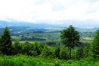 Blick von der gemütlichen Ruhebank auf  Breitnau.