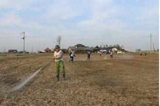 今回はこのよう広い農地への散布作業が中心でした