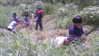 子どもたちは授業の時間の一部を使って、森の世話をしています