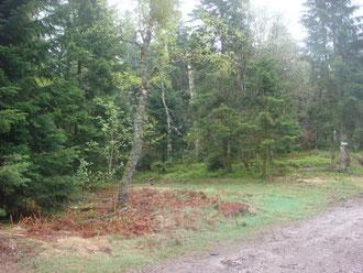 Site of the 1st German roadblock