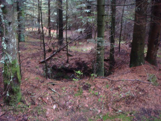 Foxholes within the Lost Battalion defense perimeter