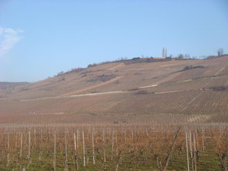 "Hill 351 known as ""Bloody Hill"" at Sigolsheim"