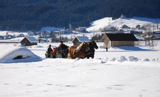 Pferdeschlittenfahrt in Gosau Mittertal