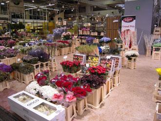 ランジス花市場の様子