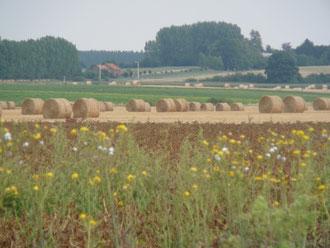 gîte campagne Saint Quentin Aisne Laon Noyon Compiegne Peronne