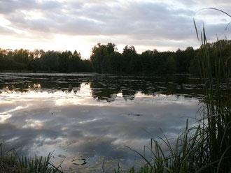 nature et randonnée autour de l'eau à Saint Simon gîte rural Saint Quentin Aisne Laon Noyon Compiegne Peronne