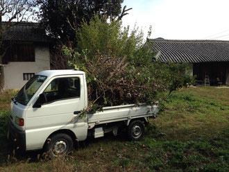 香川県で炭素循環農法