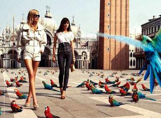"""Uccelli tropicali in piazza San Marco. La pubblicità di una nota marca di abbigliamento recita """"global warming ready"""", che è un po' come dire... pronti al peggio! In questo set, i piccioni sono spariti da piazza San Marco. Fine di un incubo"""
