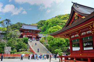 鎌倉、鶴岡八幡宮