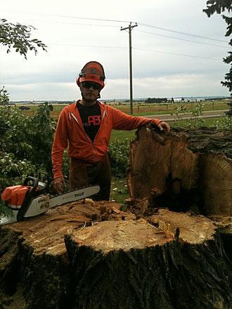 Jonathon with large poplar stump