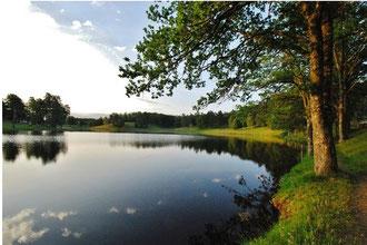 Lac d'Auriac (19)