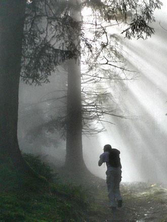 Der Weg zum effektiven Klimaschutz ist nicht immer klar. Foto: Maiken Winter