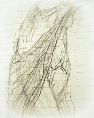 Isadorian Dance - Analyse Drachin von Terra 2013