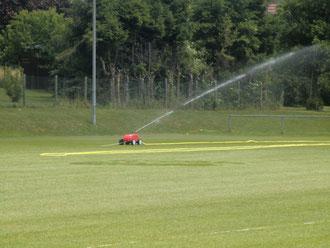 Die neuen Rasensprenger bewässern den Hauptplatz