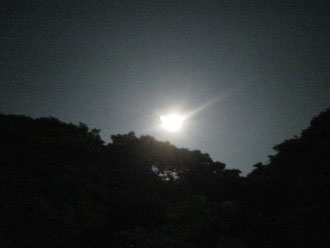 昨日は月が綺麗でしたね~。うまく撮れませんでしたが。
