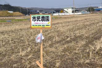 20130120 大池北松陰新田への道路に看板 上津橋れんげいじファーム