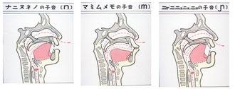 図11 鼻音の舌の構え