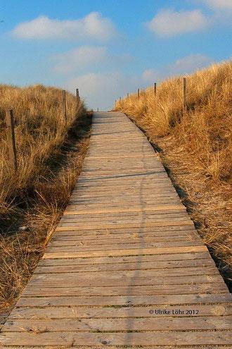 der Weg... (hier auf Spiekeroog)