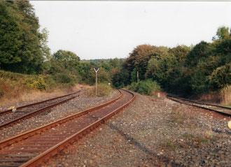 Die Ausfahrt nach Brenken- links das Gleis zu Kleeschulte und Burania, rechts das Ausziehgleis und mittig das Gleis nach Brenken.