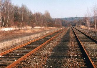Zwischen Gleis 1 und 2 in Richtung Brenken