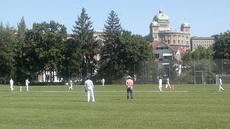 Swiss Mr. Pickwick T20 Cricket Cup