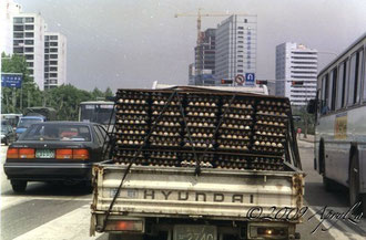 egg delivery, Seoul 1994