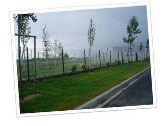 clôture panneauplis panneaux blancs et piquets verts