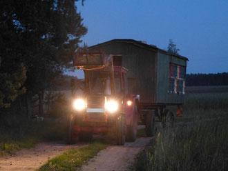 Der Traktor zieht den Bienenwagen an den neuen Standort in die Robinie