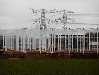Nieuwbouw Bayer in Nunhem.