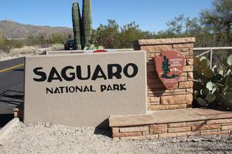 Foto Saguaro National Park East