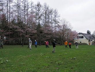 小出牧場の見事な桜です。