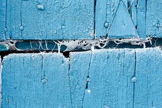 blaues Scheunetordetail mit Spinneweben mit Raureif