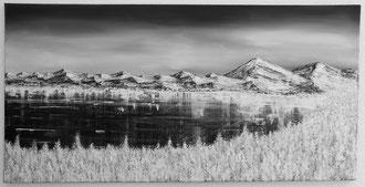 Winterbergsee s/w, 50 x 100 cm